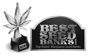 Best Seed Banks Footer